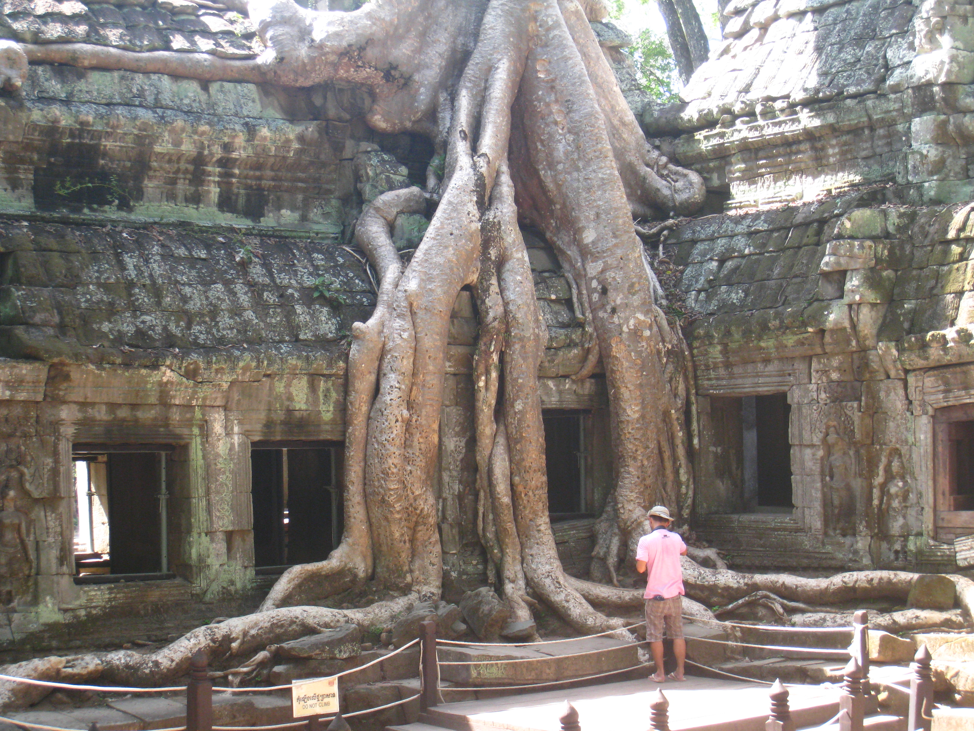 Ta Prohm (a.k.a. the Tomb Raider temple)