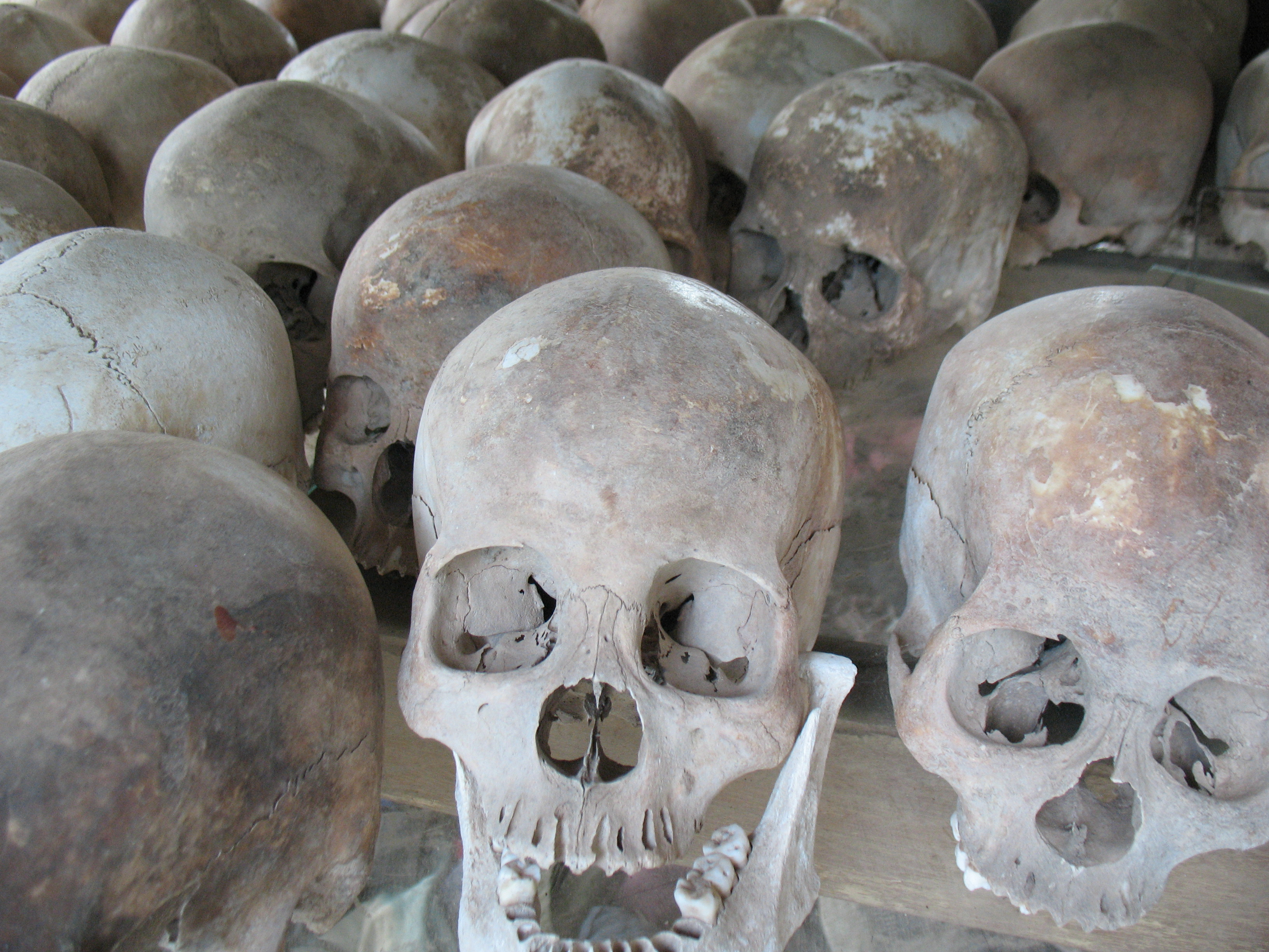 Just few of the many skulls